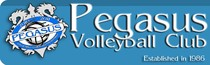 Pegasus Volleyball - Youth Volleyball in Kingston