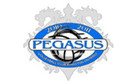 Pegasus Volleyball - u13-u18 Club Volleyball